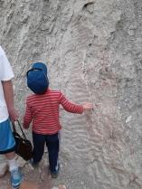 Fossil ripples